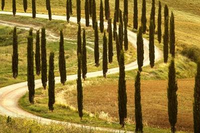 Charming day trips in Tuscany